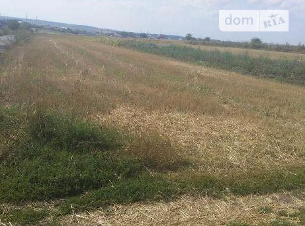 Земля сельскохозяйственного назначения в селе Березовица, площадь 20 соток фото 1