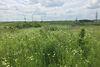 Земля сельскохозяйственного назначения в селе Била, площадь 10 соток фото 6