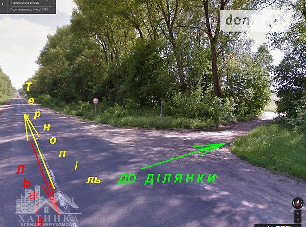 Земля сельскохозяйственного назначения в селе Довжанка, площадь 153 сотки фото 1