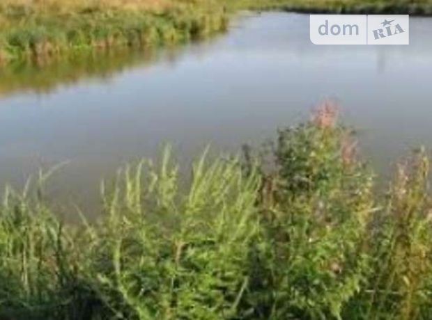 Земля сельскохозяйственного назначения в селе Довжанка, площадь 1.3 Га фото 1