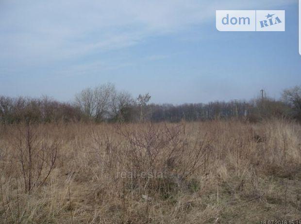 Земля сельскохозяйственного назначения в селе Ивачев Долишний, площадь 42 сотки фото 1