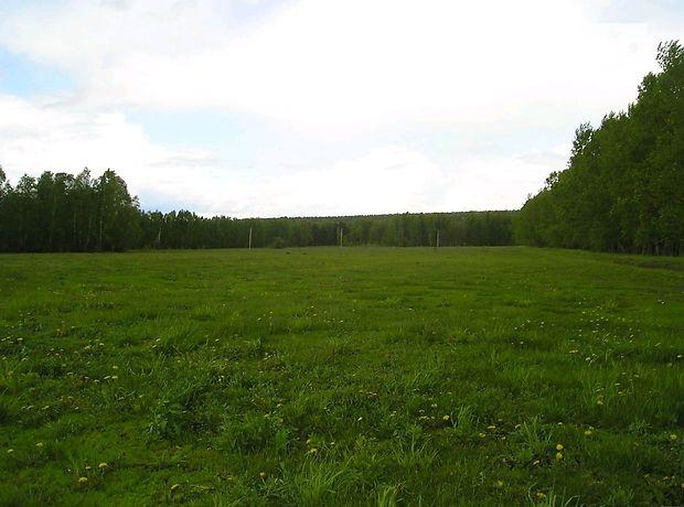 Земля сельскохозяйственного назначения в селе Ивачев Горишний, площадь 30 соток фото 1