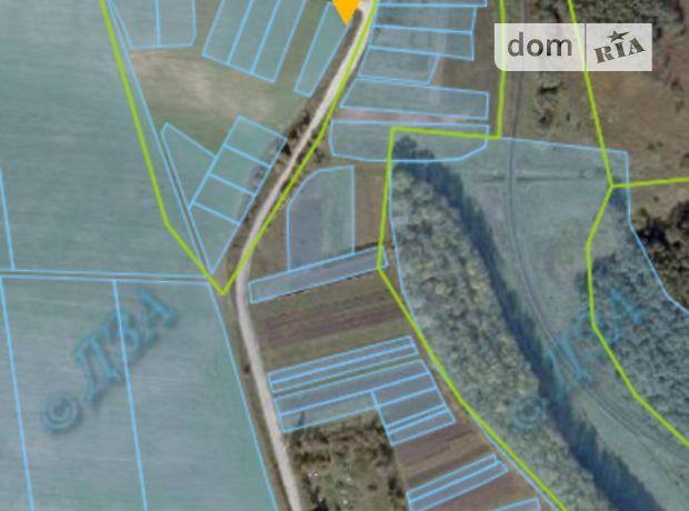 Земля сельскохозяйственного назначения в селе Лозовая, площадь 15 соток фото 1