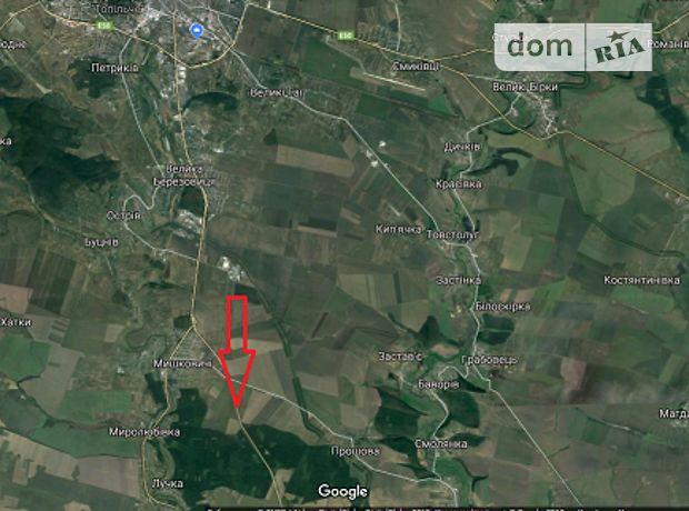 Земля сельскохозяйственного назначения в селе Мишковичи, площадь 600 соток фото 1