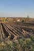 Земля сельскохозяйственного назначения в селе Первые Львовские Дачи, площадь 6 соток фото 7