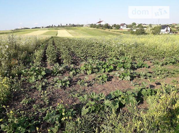 Продажа земли сельскохозяйственного назначения, Тернополь, c.Подгородное