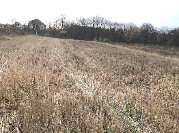 Земля сельскохозяйственного назначения в селе Великие Гаи, площадь 16 соток фото 1