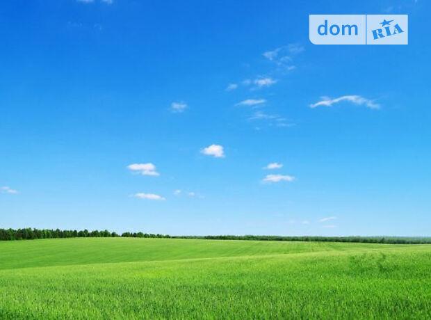 Земля сільськогосподарського призначення в селі Гордіївка, площа 2 Га фото 2