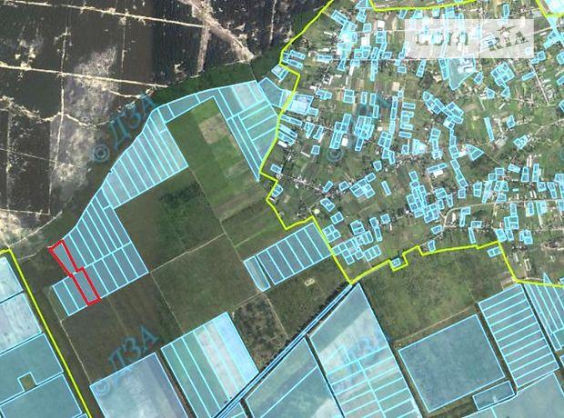 Земля сельскохозяйственного назначения в селе Раденск, площадь 4 Га фото 1