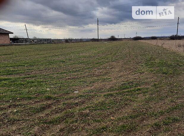 Земля сельскохозяйственного назначения в селе Баранинцы, площадь 3.7 Га фото 1