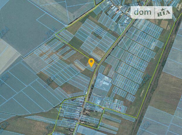 Земля сельскохозяйственного назначения в селе Холмок, площадь 30 соток фото 2