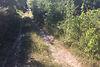 Земля сельскохозяйственного назначения в Ужгороде, район Шахта, площадь 11 соток фото 3
