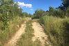 Земля сельскохозяйственного назначения в Ужгороде, район Шахта, площадь 11 соток фото 5
