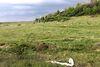 Земля сельскохозяйственного назначения в селе Среднее, площадь 87 соток фото 2