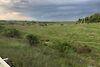 Земля сельскохозяйственного назначения в селе Среднее, площадь 87 соток фото 3