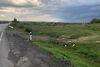 Земля сельскохозяйственного назначения в селе Среднее, площадь 87 соток фото 4