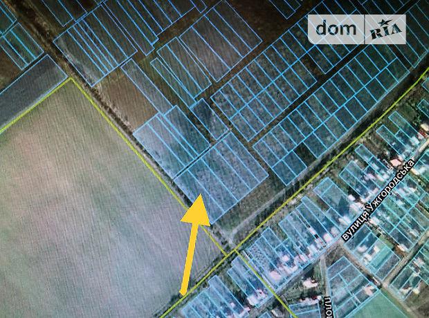 Земля сельскохозяйственного назначения в селе Сторожница, площадь 30 соток фото 1