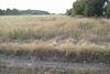 Земля сельскохозяйственного назначения в Виннице, район Дальнее замостье, площадь 45 соток фото 2