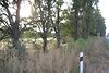 Земля сельскохозяйственного назначения в Виннице, район Дальнее замостье, площадь 45 соток фото 6