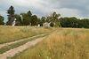 Земельный участок сельскохозяйственного назначения в Тыврове, площадь 1 Га фото 5