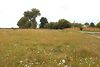 Земельный участок сельскохозяйственного назначения в Тыврове, площадь 1 Га фото 7