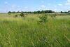Земля сельскохозяйственного назначения в селе Лука-Мелешковская, площадь 20 соток фото 3
