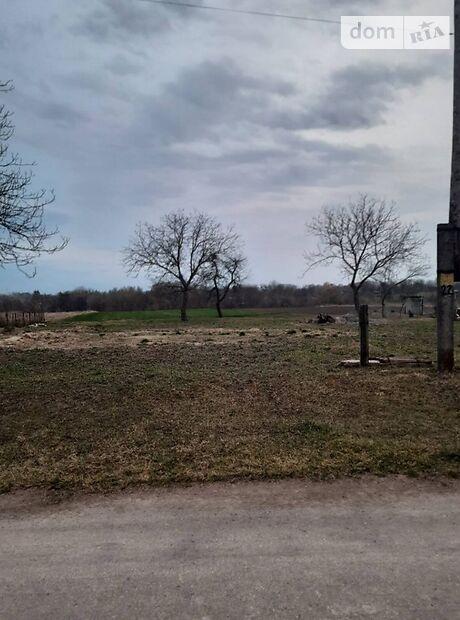 Земля сельскохозяйственного назначения в селе Рубченки, площадь 25 соток фото 1