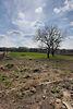 Земля сельскохозяйственного назначения в селе Рубченки, площадь 25 соток фото 2