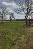 Земля сельскохозяйственного назначения в селе Рубченки, площадь 25 соток фото 3