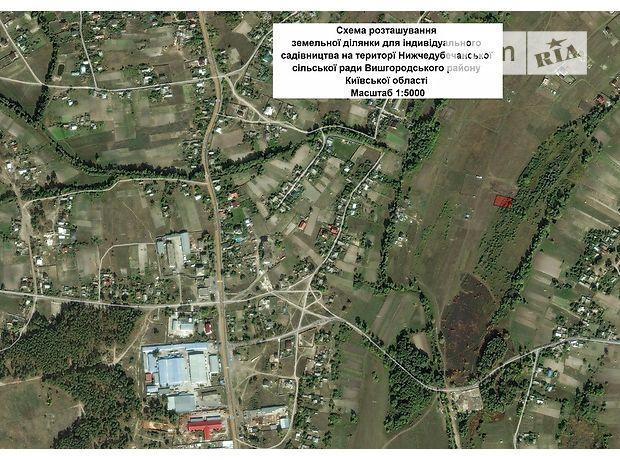 Продажа земли сельскохозяйственного назначения, Киевская, Вышгород, c.Нижняя Дубечня