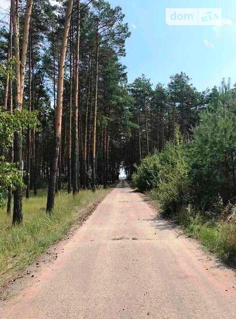 Земля сельскохозяйственного назначения в селе Низшая Дубечня, площадь 4 Га фото 1
