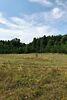 Земля сельскохозяйственного назначения в селе Низшая Дубечня, площадь 4 Га фото 3