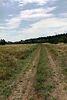 Земля сельскохозяйственного назначения в селе Низшая Дубечня, площадь 4 Га фото 5
