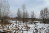Земля сельскохозяйственного назначения в селе Новоселки, площадь 400 соток фото 5