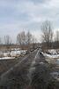 Земля сельскохозяйственного назначения в селе Новоселки, площадь 400 соток фото 6