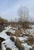 Земля сельскохозяйственного назначения в селе Новоселки, площадь 400 соток фото 7