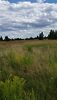 Земля сельскохозяйственного назначения в селе Старые Петровцы, площадь 12 соток фото 1