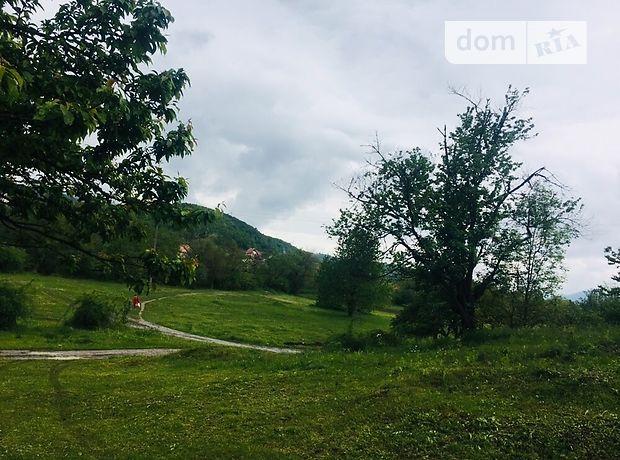 Ключевской район село красный яр фотографии того
