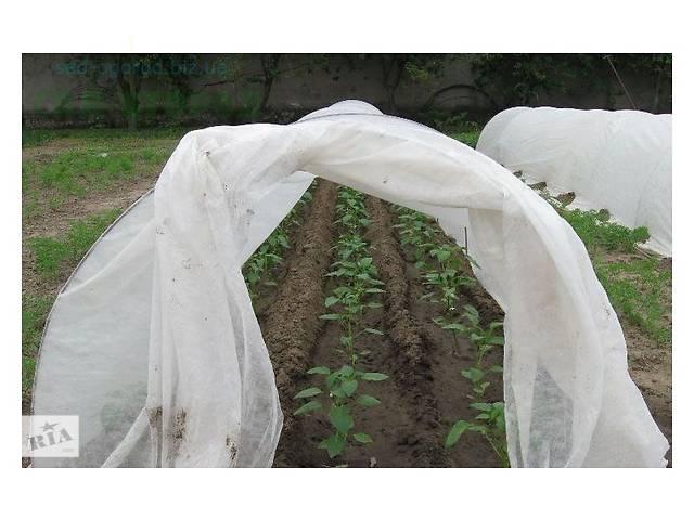 Агроволокно Агротекс 60 г/м² (1,6м*10м), защита от морозов, укрытие на зиму растений- объявление о продаже  в Киеве