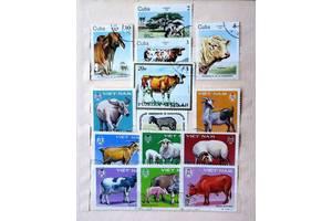 Почтовые марки фауна
