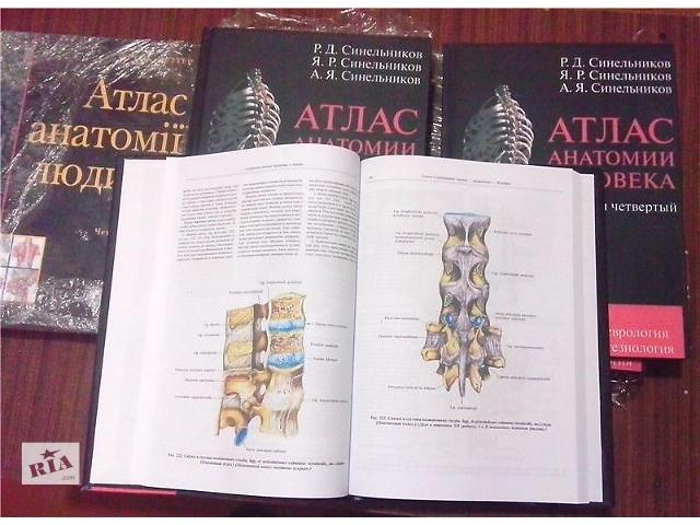Книга анатомия человека синельников скачать