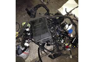 б/у Проводка двигателя Kia Carens