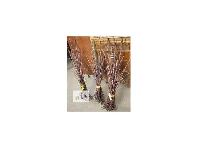 Черенки персиков/нектарина!! Большая коллекция новых сортов!!- объявление о продаже  в Кривом Роге