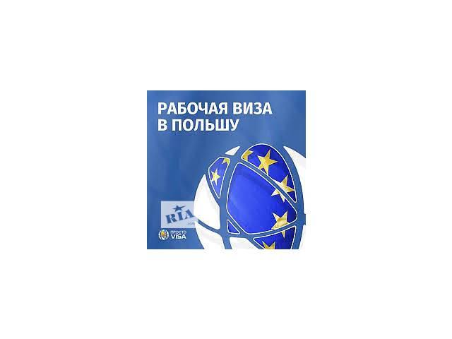 купить бу Делаем полный пакет документов для получения национальной рабочей польской визы (D) 180/360  в Украине
