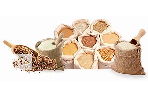 Дерть (кукурузная макуха,отруби пшеничные,просо)