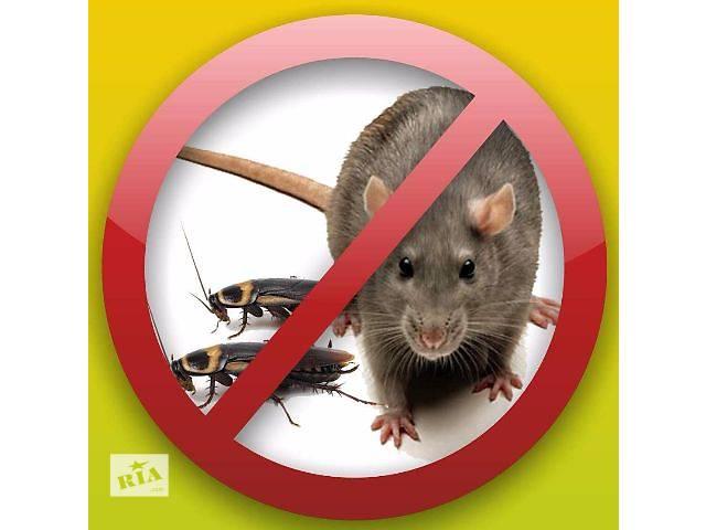 бу Дезинсекция (уничтожение клопов, тараканов) дератизация (Уничтожение крыс мышей), дезинфекция квартир, авто в Никополе
