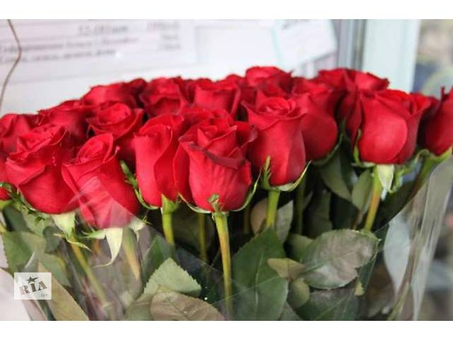 бу Доставка цветов по Днепропетровску! в Днепре (Днепропетровск)