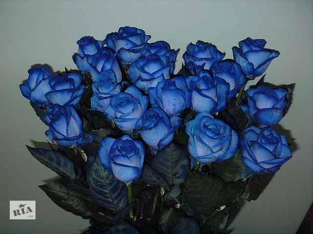 продам Доставка цветов бу в Винницкой области