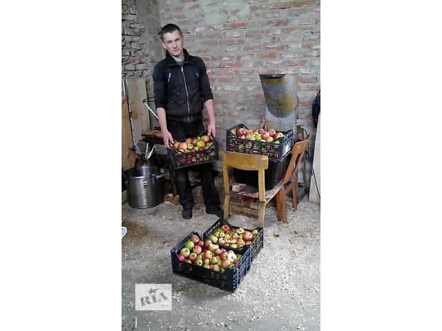 бу Душу и продаю яблочный сок в Старом Самборе