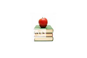 Рефераты курсовые дипломные работы в Виннице стоимость и цены  Рефераты курсовые дипломные работы